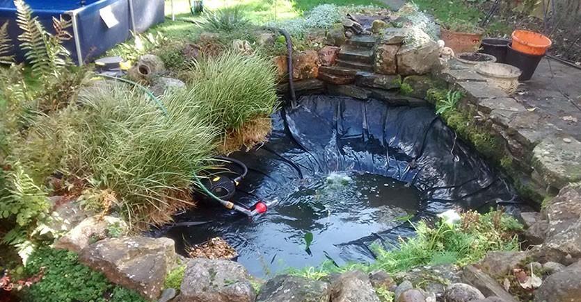очистка прудов - полный комплекс услуг по очистка пруда